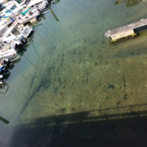 Good Hosts will always you have the information you need such as when low tides might impede your access to a marina